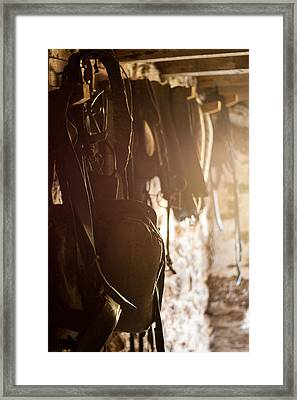 Old Harness Framed Print