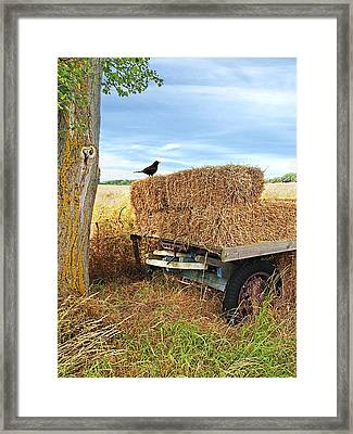 Old Hay Wagon Vertical Framed Print by Gill Billington