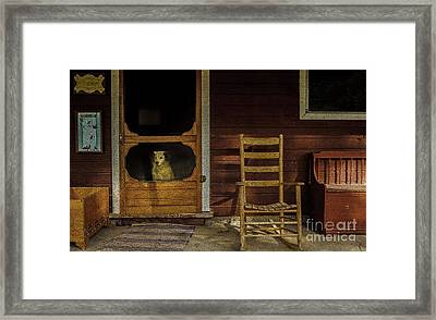 Old Hickory Framed Print by Mitch Shindelbower