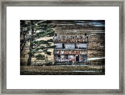 Old Home Place With Birds In Front Yard Framed Print by Dan Friend