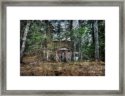 Old House With Overgrown Brush Framed Print by Dan Friend
