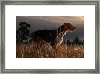 Old Hunting Dog Framed Print by Daniel Eskridge