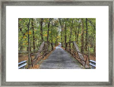 Old Iron Bridge At Panther Creek Framed Print