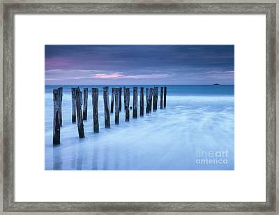 Old Jetty Pilings Dunedin New Zealand Framed Print by Colin and Linda McKie
