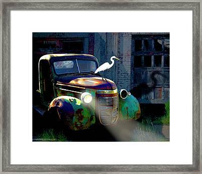 Old Jimmy Framed Print