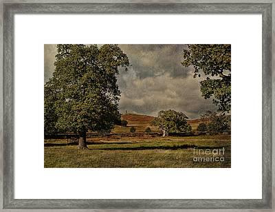 Old John Bradgate Park Leicestershire Framed Print by John Edwards