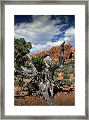 Old Juniper Tree Stump And Arch Rock Formation In Arches National Park Framed Print by Randall Nyhof