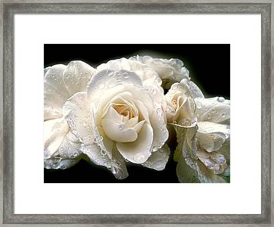 Old Lace Rose Bouquet Framed Print by Jennie Marie Schell