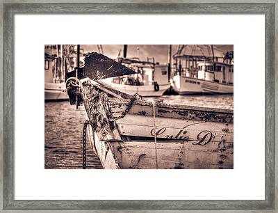 Old Lulie D Framed Print by Mark Hazelton