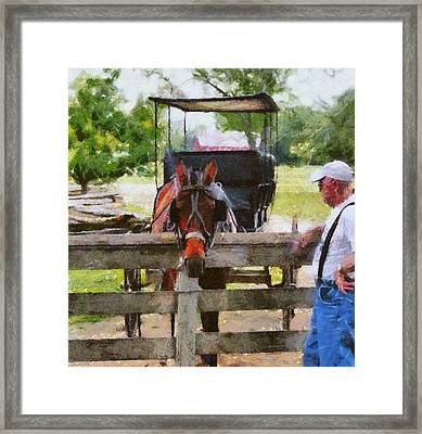 Old Man And His Horse Framed Print