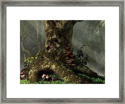 Old Man Of The Forest Framed Print