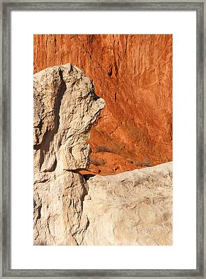 Old Man Of The Park Framed Print