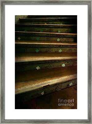 Old Metal Stairs With Ornaments Framed Print