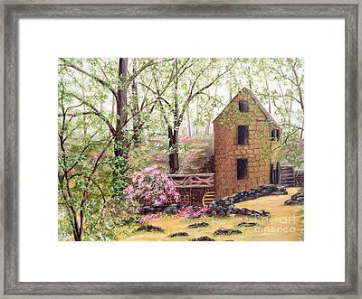 Old Mill Back Trail Framed Print