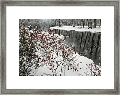 Old Mine Park In Snow Framed Print