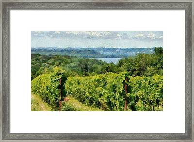 Old Mission Peninsula Vineyard Framed Print by Michelle Calkins