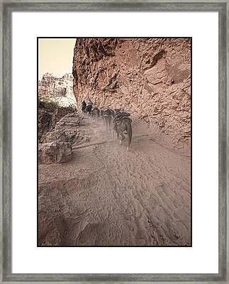 Old Mule Train Framed Print by Stellina Giannitsi