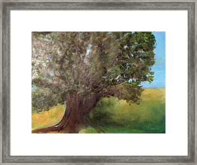 Old Oak Framed Print by Andrea Friedell