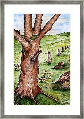 Old Oak Tree With Birds' Nest Framed Print