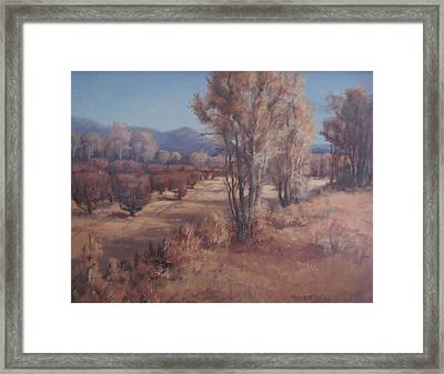Old Orchard Framed Print by Mar Evers
