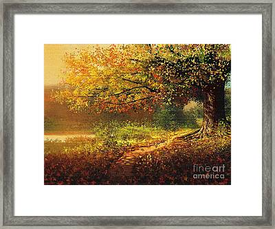 Old Path Framed Print by Robert Foster