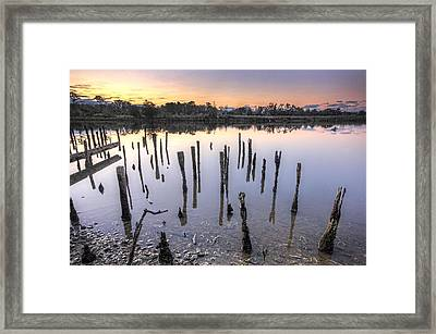 Old Pilings On The Bon Secour Framed Print by Michael Thomas