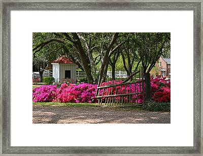 Old Plantation Gate Framed Print