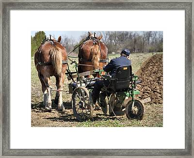 Old Plow And Work Horses Framed Print by Dan Sproul