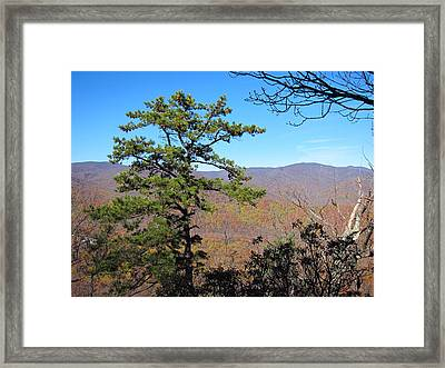 Old Rag Hiking Trail - 121221 Framed Print by DC Photographer