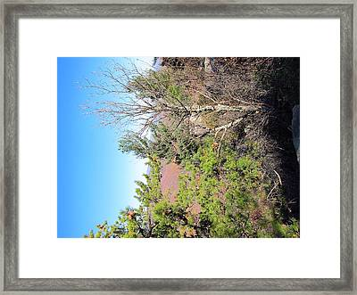 Old Rag Hiking Trail - 121226 Framed Print by DC Photographer