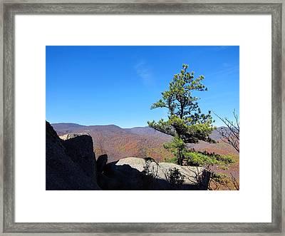 Old Rag Hiking Trail - 121230 Framed Print
