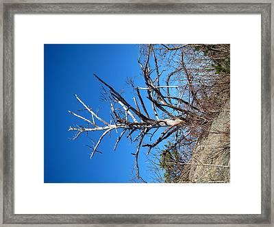 Old Rag Hiking Trail - 121237 Framed Print