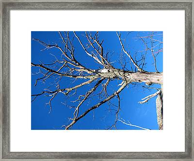 Old Rag Hiking Trail - 121241 Framed Print by DC Photographer