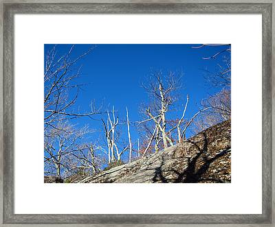Old Rag Hiking Trail - 121245 Framed Print