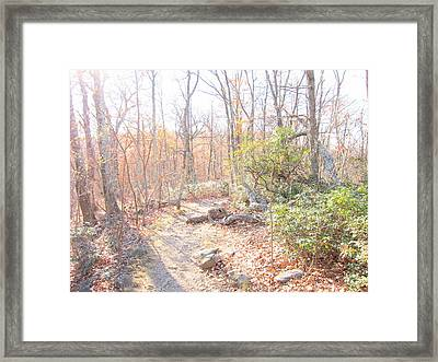 Old Rag Hiking Trail - 121249 Framed Print by DC Photographer