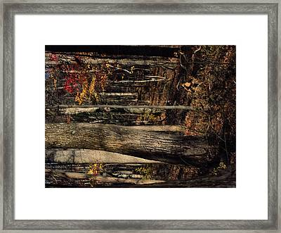 Old Rag Hiking Trail - 121251 Framed Print by DC Photographer