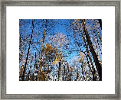 Old Rag Hiking Trail - 121253 Framed Print by DC Photographer
