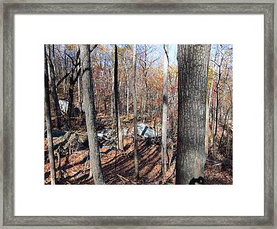 Old Rag Hiking Trail - 12126 Framed Print by DC Photographer