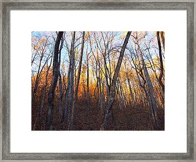 Old Rag Hiking Trail - 121262 Framed Print by DC Photographer