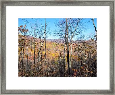 Old Rag Hiking Trail - 12128 Framed Print by DC Photographer