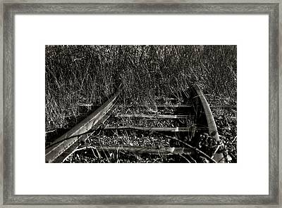 Old Rails Framed Print