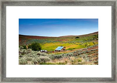 Old Ranch Framed Print by Robert Bales