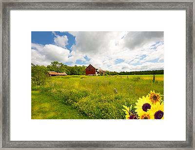Old Red Barn. Framed Print by Kelly Nelson