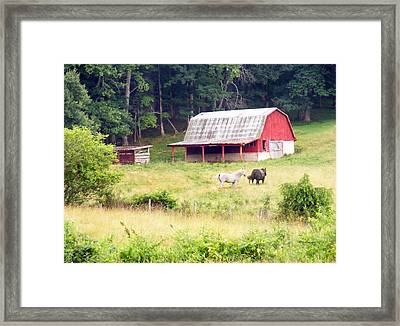 Old Red Barn West Of Brevard Nc Framed Print