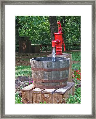 Old Red Water Pump Framed Print