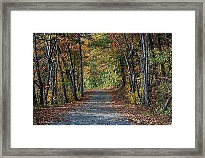 Old River Road North Creek  Framed Print