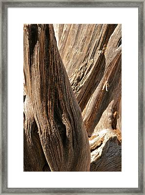 Old Ruins Grand Canyon Az Framed Print by Gail Maloney