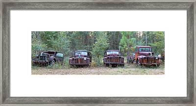 Old Rusty Cars And Trucks On Route 319 Framed Print