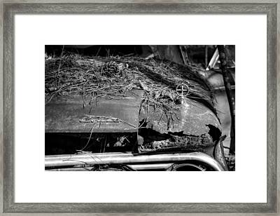 Old Rusty Mercury Comet In Black And White Framed Print by Greg Mimbs