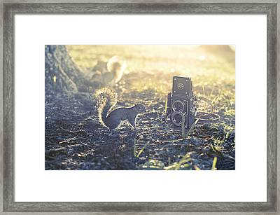 Old School Framed Print by Laura Fasulo